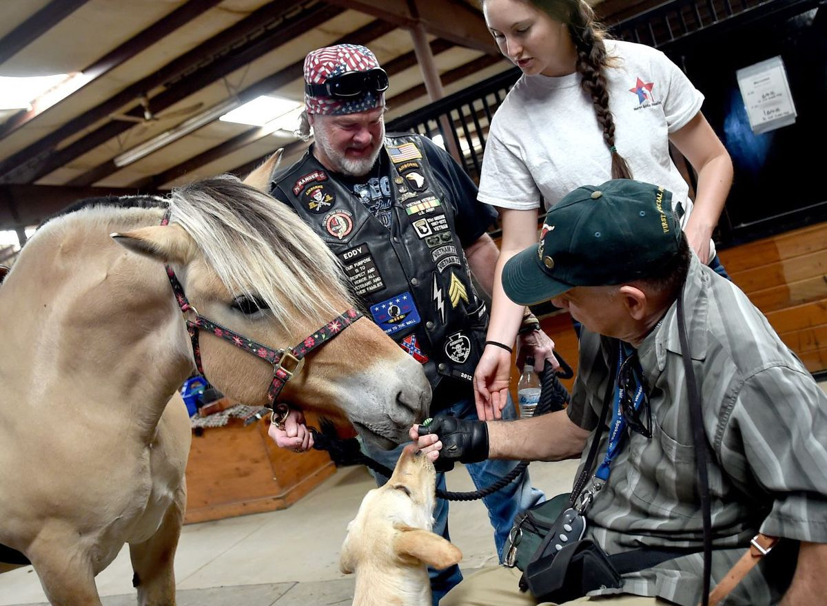 FORTIN FAMILY FOUNDATION AWARDS GRANT FOR VET EQUINE THERAPY